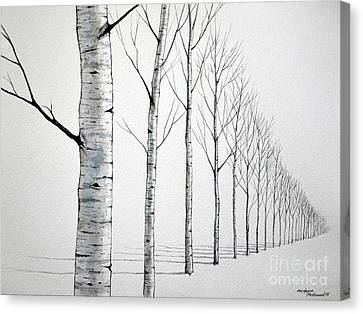 Row Of Birch Trees In The Snow Canvas Print