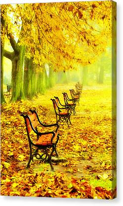 Row Of Red Benches In The Park Canvas Print by Jaroslaw Grudzinski