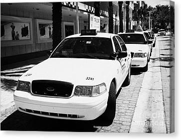 Row Of Yellow Cab Taxis In Miami South Beach Florida Usa Canvas Print by Joe Fox