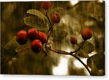 Canvas Print featuring the mixed media  Berry Nice by Fine Art By Andrew David
