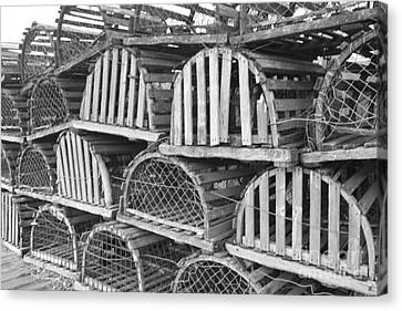 Rows Of Old And Abandoned Lobster Traps Canvas Print by John Telfer