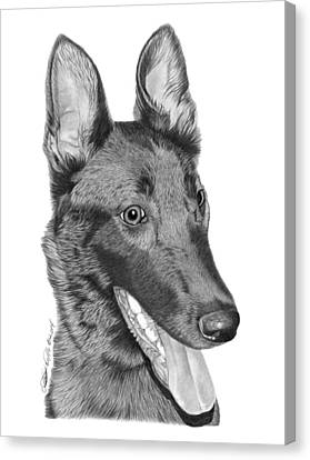 Canvas Print featuring the drawing Roxy - 028 by Abbey Noelle
