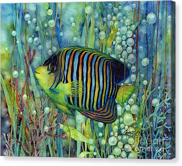 Tropical Fish Canvas Print - Royal Angelfish by Hailey E Herrera