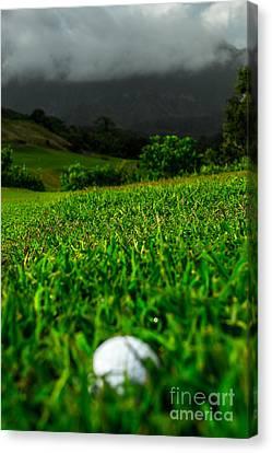Canvas Print featuring the photograph Royal Hawaiian Golf by Angela DeFrias