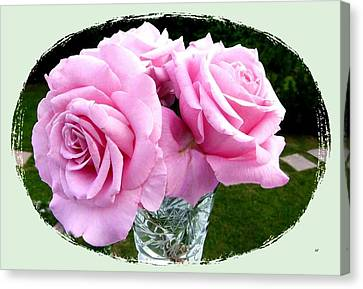 Royal Kate Roses Canvas Print by Will Borden