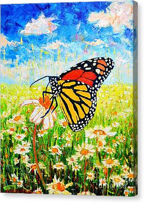 Royal Monarch Butterfly In Daisies Canvas Print by Ana Maria Edulescu