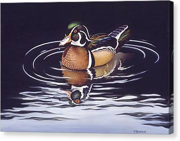 Wood Duck Canvas Print - Royal Reflections by Richard De Wolfe