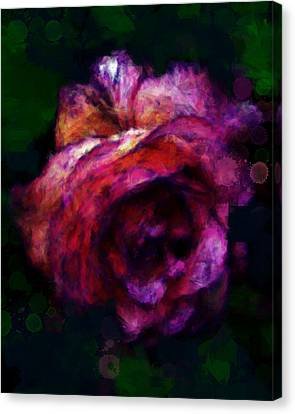 Royal Rose Painted Canvas Print