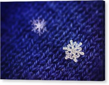 Royal Snowflakes Canvas Print