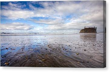 Ruby Beach Canvas Print by Anthony J Wright