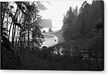 Ruby Beach In The Winter In Black And White Canvas Print by Jeanette C Landstrom
