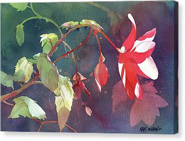 Ruby Begonia Canvas Print by Kris Parins