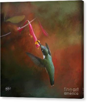 Ruby In Oil Canvas Print by Cris Hayes