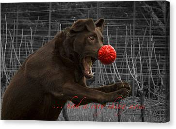 Rudolph Canvas Print by Jean Noren