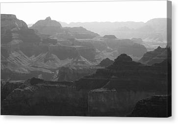 Rugged Canvas Print