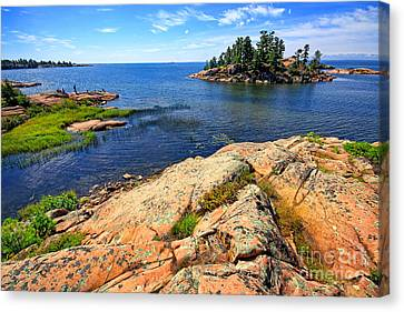 Rugged Beauty Canvas Print by Charline Xia