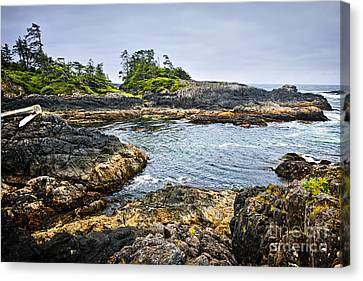 Rugged Coast Of Pacific Ocean On Vancouver Island Canvas Print by Elena Elisseeva