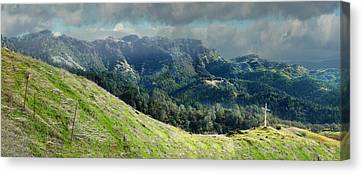 Ruggedly Wild Canvas Print by Stan Angel
