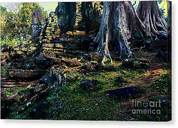 Ruins And Roots Canvas Print
