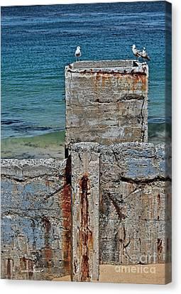 Ruins At Monterey Bay Canvas Print by Susan Wiedmann