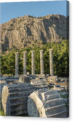 Ruins Of The Temple Of Athene Canvas Print by David Parker