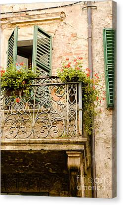 Florid Canvas Print - run down Italian balcony with shutters and flowers by Peter Noyce