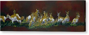 Pronghorn Antelope Canvas Print - RUN by Lana Tyler