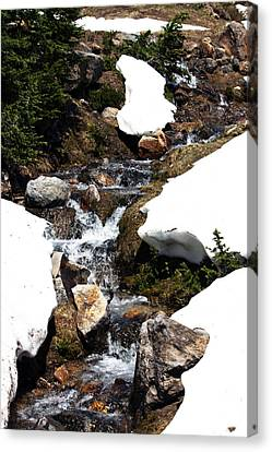 Running Down The Mountain Canvas Print
