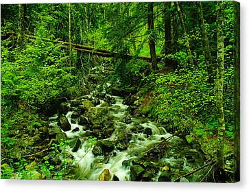 Running Down The Mountain Canvas Print by Jeff Swan