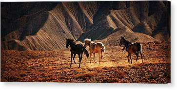 Canvas Print featuring the photograph Running Free by Priscilla Burgers