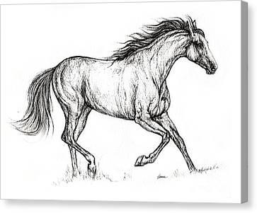 Running Horses Canvas Print - Running  Horse 08 10 2013 by Angel  Tarantella