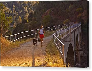 Canvas Print featuring the photograph Running On No Hands by Sherri Meyer