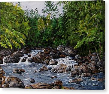 Running Stream Canvas Print by Nancie Johnson
