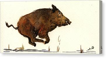 Running Wildboar Canvas Print by Juan  Bosco