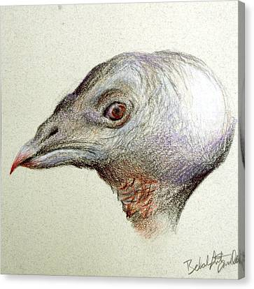 Rupert Canvas Print by Rebekah Kitzmiller