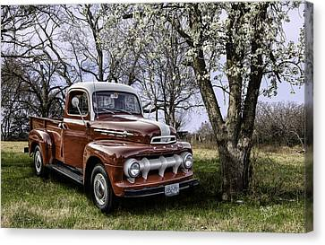 Rural 1952 Ford Pickup Canvas Print