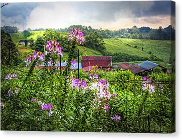 Rural Garden Canvas Print by Debra and Dave Vanderlaan