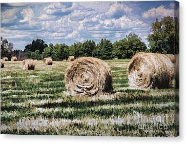 Canvas Print featuring the painting Rural Georgia by Linda Blair