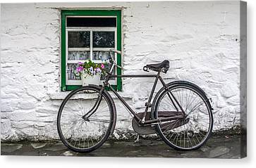 Rural Ireland Canvas Print by Pierre Leclerc Photography