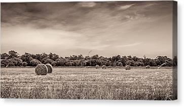 Rural Land Canvas Print by Shari Mattox