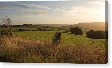 Rural Landscape Canvas Print by Shari Mattox