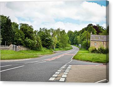 Rural Road Canvas Print by Tom Gowanlock