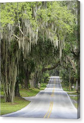 Rural Route Canvas Print by Laurie Perry
