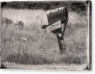 Rural Route Mail Call  Canvas Print by Jean OKeeffe Macro Abundance Art