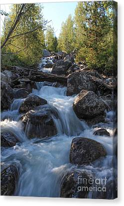 Rushing Cascades Canvas Print