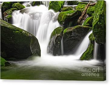 Rushing Waters Canvas Print by Deborah Scannell