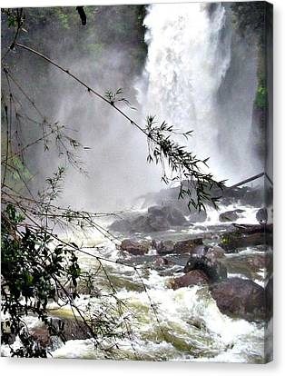 Rushing Waters Canvas Print