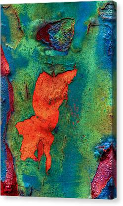 Canvas Print featuring the photograph Rust Is Beautiful by Jerry Gammon