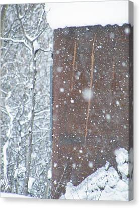 Rust Not Sleeping In The Snow Canvas Print