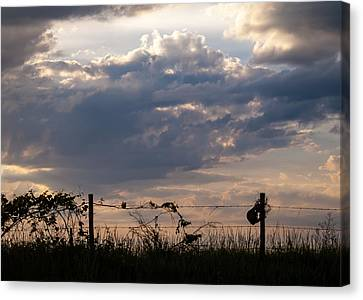 Canvas Print featuring the photograph Rusted Bucket by Wayne Meyer